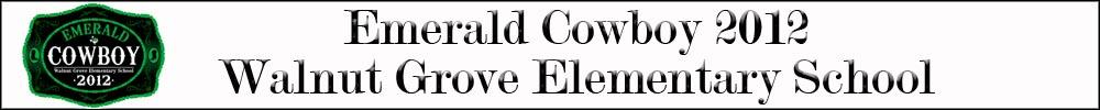 Emerald Cowboy Banner