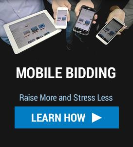 Online Bidding Promo